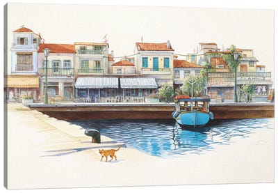 Greek Cat By The Harbour Canvas Art Print