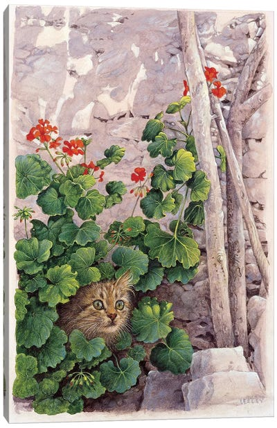 Katia Greek Cat In Geraniums Canvas Art Print