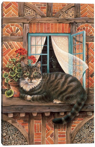 Malteazer At The Window Canvas Art Print