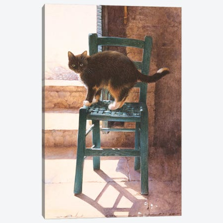 Motley In A Mediterranean Interior Canvas Print #IVR30} by Ivory Cats Canvas Wall Art