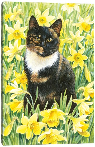 Motley In Wild Daffodils Canvas Art Print