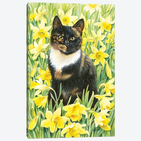 Motley In Wild Daffodils Canvas Print #IVR32} by Ivory Cats Canvas Artwork