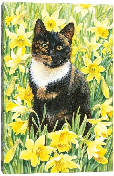 Motley In Wild Daffodils Canvas Art Print