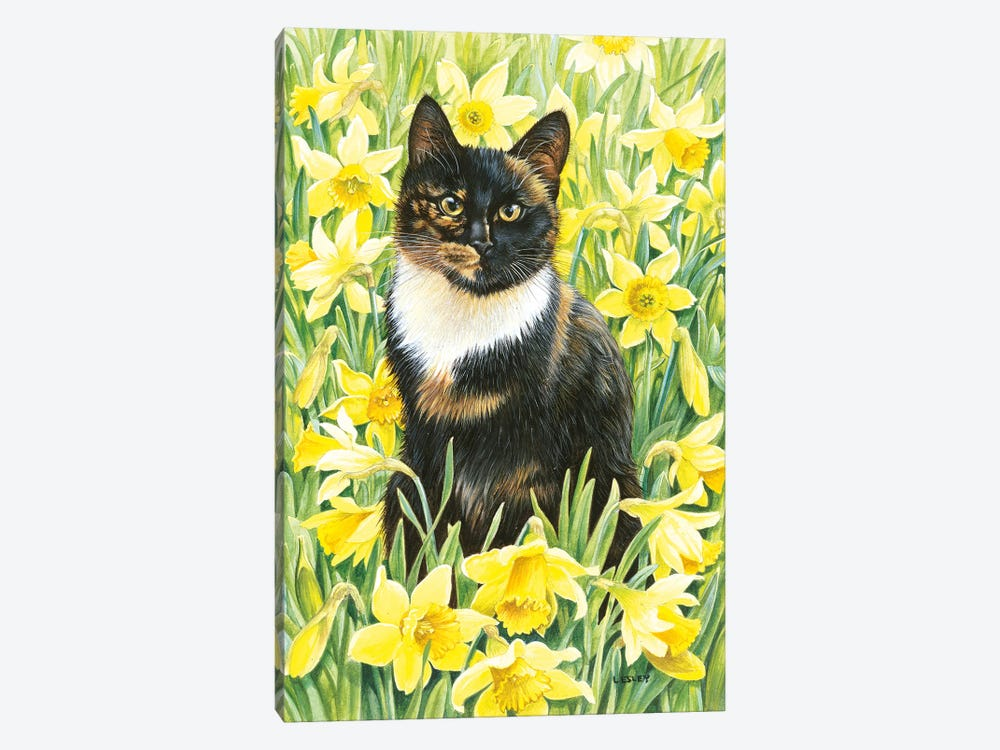 Motley In Wild Daffodils by Ivory Cats 1-piece Canvas Art