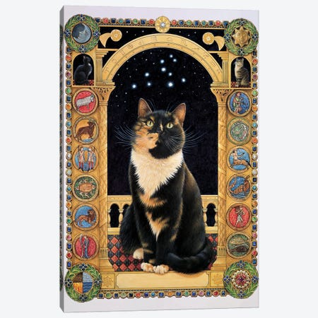 Motley Stargazing At Her Sign Canvas Print #IVR33} by Ivory Cats Canvas Wall Art