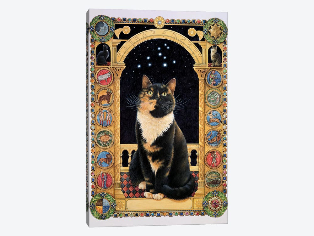 Motley Stargazing At Her Sign by Ivory Cats 1-piece Canvas Art Print