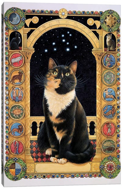 Motley Stargazing At Her Sign Canvas Art Print
