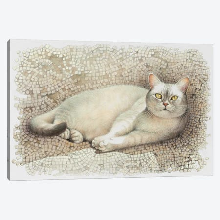 Mumu Resting On Sun Warmed Mosaic Canvas Print #IVR34} by Ivory cats Canvas Art Print