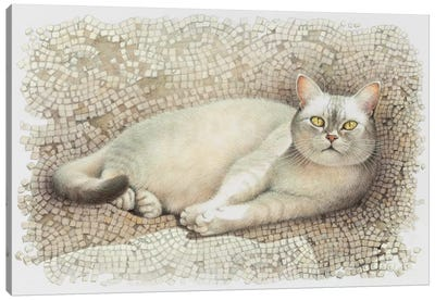 Mumu Resting On Sun Warmed Mosaic Canvas Art Print