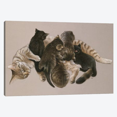 Muppet Nursing Her Kittens Canvas Print #IVR35} by Ivory cats Art Print