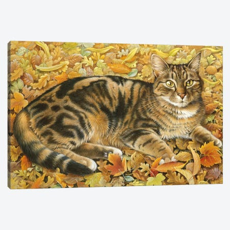 Octopussy In Autumn Leaves Canvas Print #IVR37} by Ivory Cats Art Print