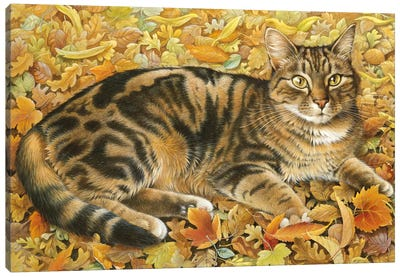 Octopussy In Autumn Leaves Canvas Art Print