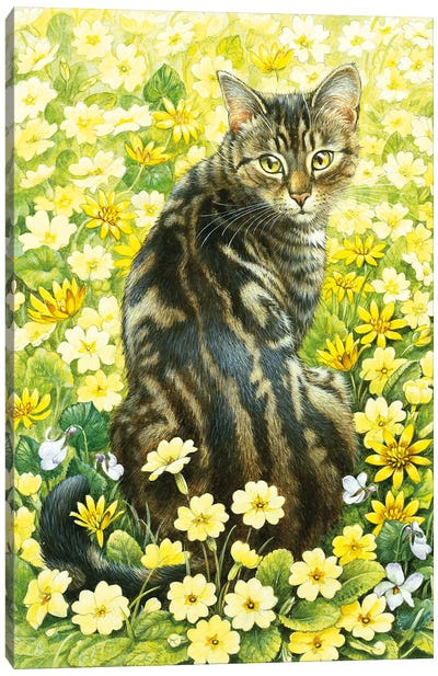 Octopussy In Spring Flowers Canvas Art Print