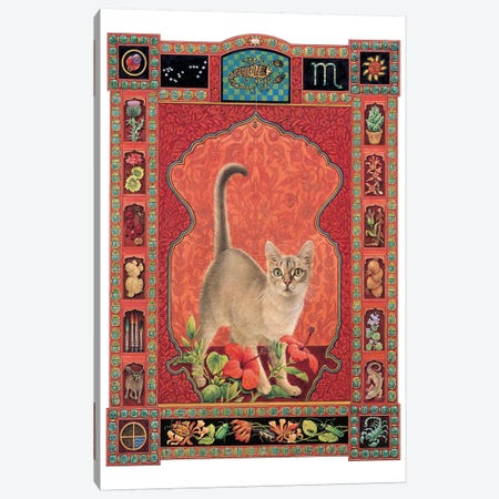 Scorpio - Sirius Canvas Print #IVR44} by Ivory cats Canvas Wall Art