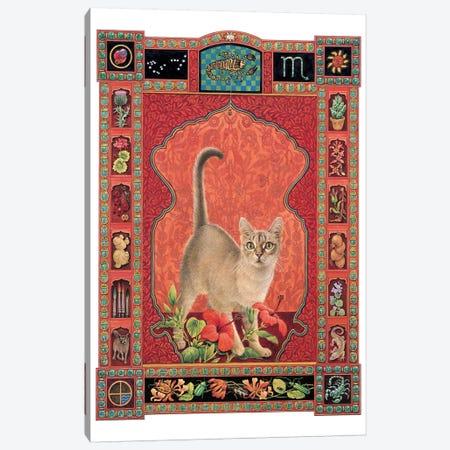 Scorpio - Sirius Canvas Print #IVR44} by Ivory Cats Canvas Wall Art