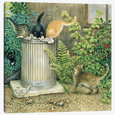 Teamwork In A Neighbouring Dustbin 3-Piece Canvas #IVR49} by Ivory Cats Canvas Art Print