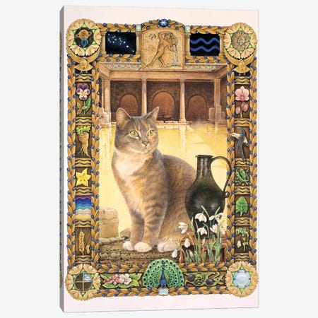Aquarius - Sappho Canvas Print #IVR4} by Ivory cats Canvas Print