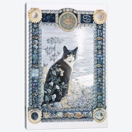 Cancer - Chesterton Canvas Print #IVR8} by Ivory Cats Canvas Artwork