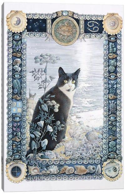 Cancer - Chesterton Canvas Art Print