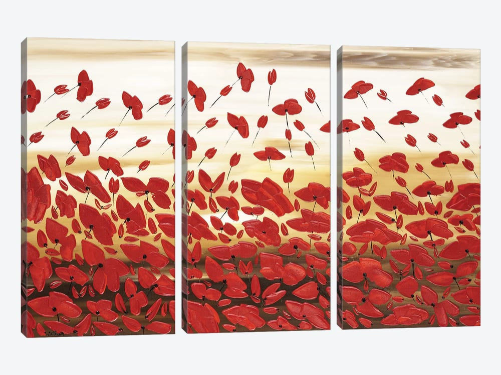 Red Poppies by Ilonka Walter 3-piece Canvas Wall Art