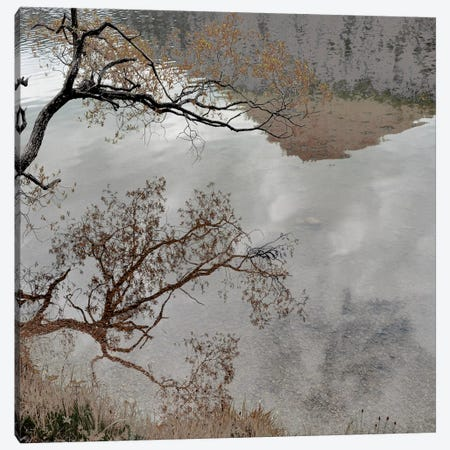 Warm Afternoon II Canvas Print #IWE11} by Irene Weisz Canvas Art