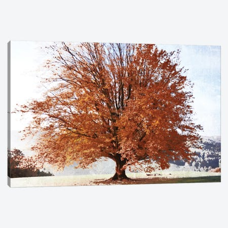 Season Of Fall Canvas Print #IWE14} by Irene Weisz Canvas Art Print
