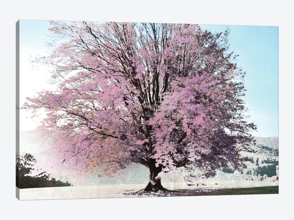 Season Of Spring by Irene Weisz 1-piece Canvas Art Print