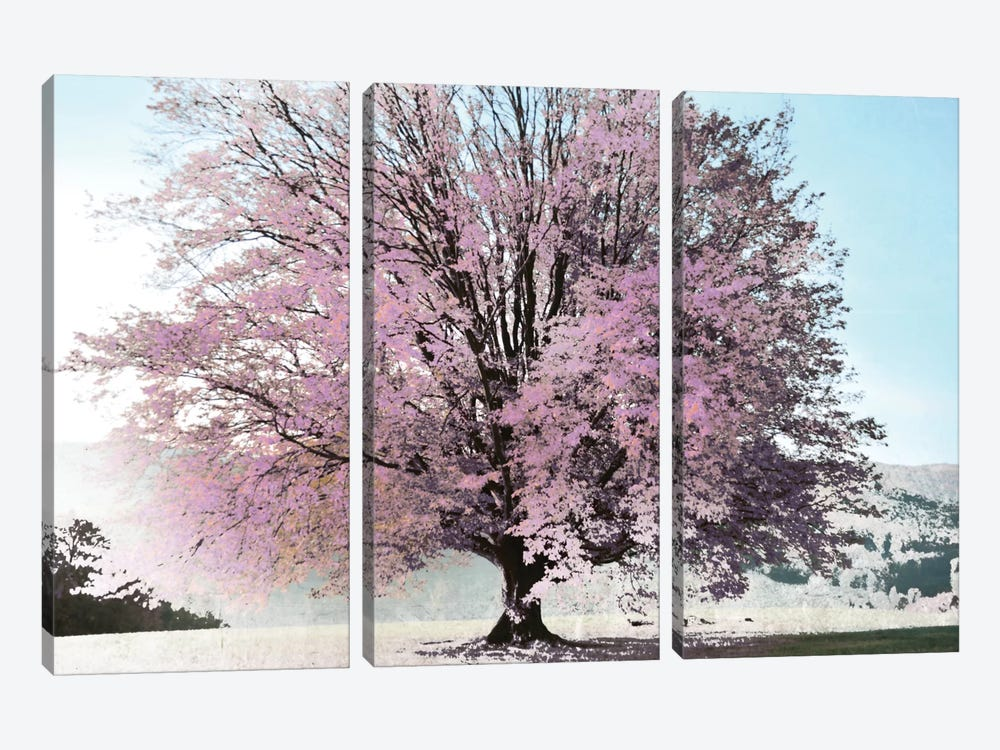 Season Of Spring by Irene Weisz 3-piece Canvas Print