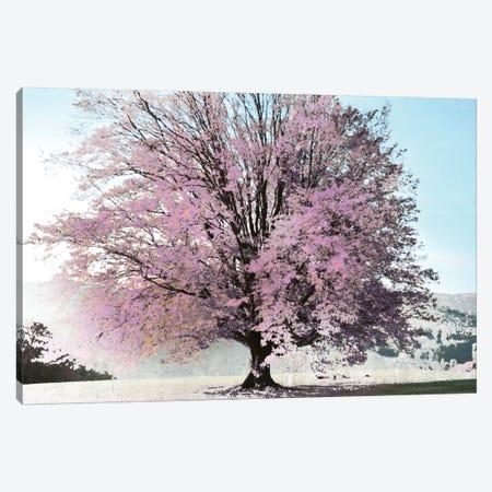 Season Of Spring Canvas Print #IWE15} by Irene Weisz Canvas Art Print