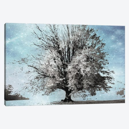 Season Of Winter Canvas Print #IWE17} by Irene Weisz Canvas Art Print