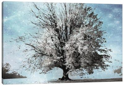 Season Of Winter Canvas Art Print