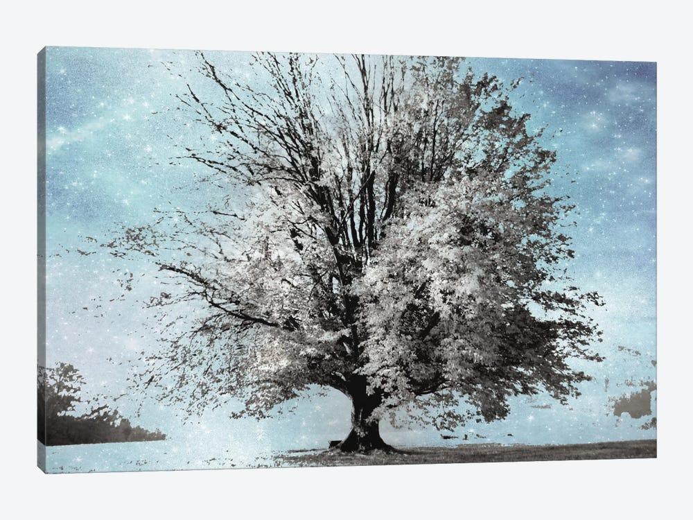 Season Of Winter by Irene Weisz 1-piece Canvas Print