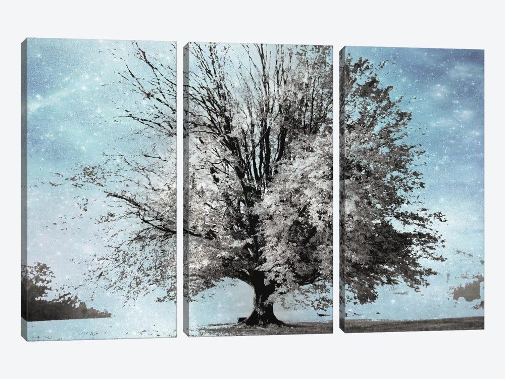 Season Of Winter by Irene Weisz 3-piece Canvas Print