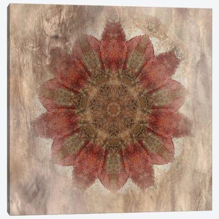 Autumn Kaleidoscope I Canvas Print #IWE18} by Irene Weisz Canvas Artwork
