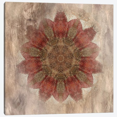 Autumn Kaleidoscope I Canvas Print #IWE18} by Irene Weisz Canvas Artwork