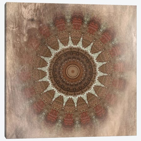 Autumn Kaleidoscope II Canvas Print #IWE19} by Irene Weisz Canvas Art