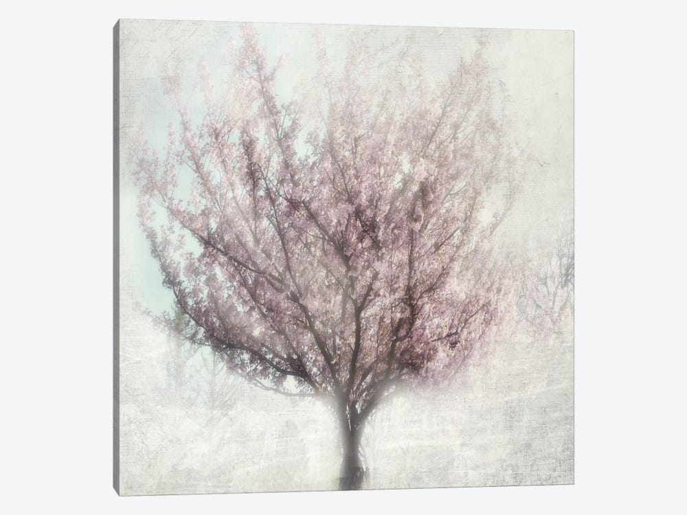 Blossom Of Spring I by Irene Weisz 1-piece Canvas Art