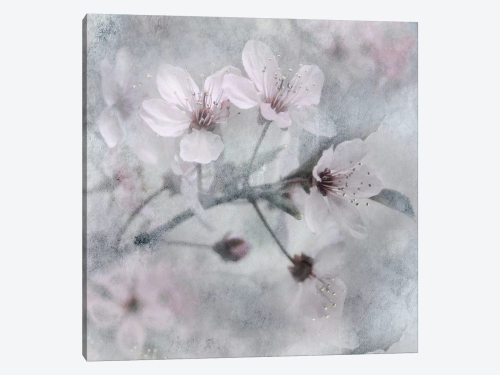 Spring Melody I by Irene Weisz 1-piece Canvas Art Print