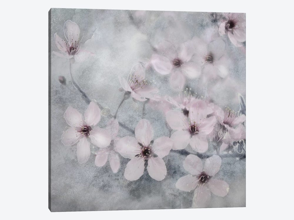 Spring Melody II by Irene Weisz 1-piece Canvas Art