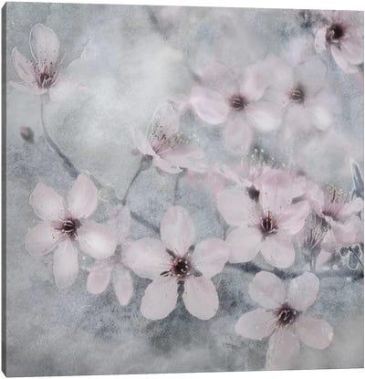 Spring Melody II Canvas Art Print