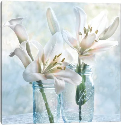 Ball Mason Lily I Canvas Art Print
