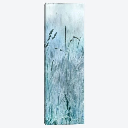 Blue Field Forever I 3-Piece Canvas #IWE24} by Irene Weisz Canvas Artwork