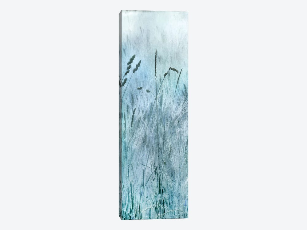 Blue Field Forever I by Irene Weisz 1-piece Canvas Print