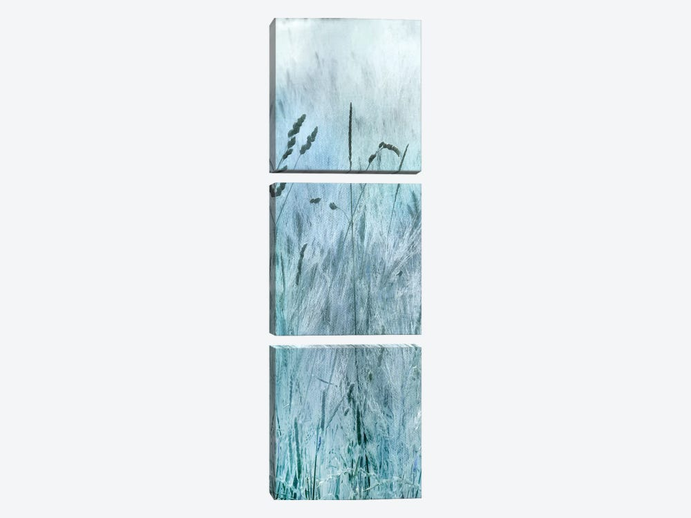 Blue Field Forever I by Irene Weisz 3-piece Canvas Art Print