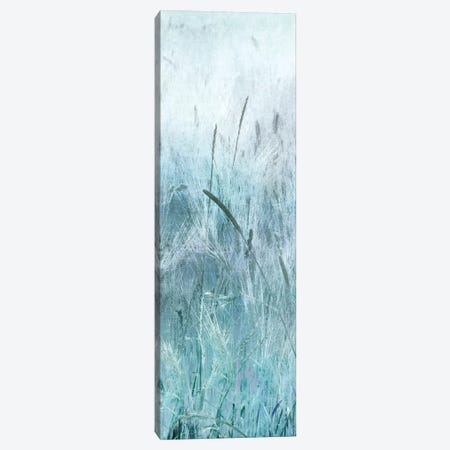 Blue Field Forever II Canvas Print #IWE25} by Irene Weisz Canvas Artwork