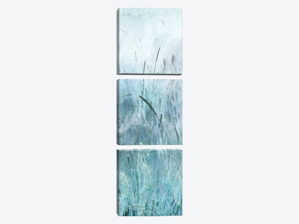 Blue Field Forever II by Irene Weisz 3-piece Canvas Artwork