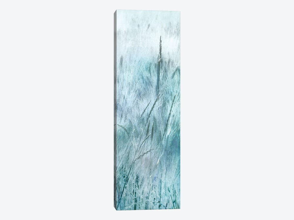 Blue Field Forever III by Irene Weisz 1-piece Canvas Art Print