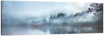 Morning Wonders Canvas Art Print