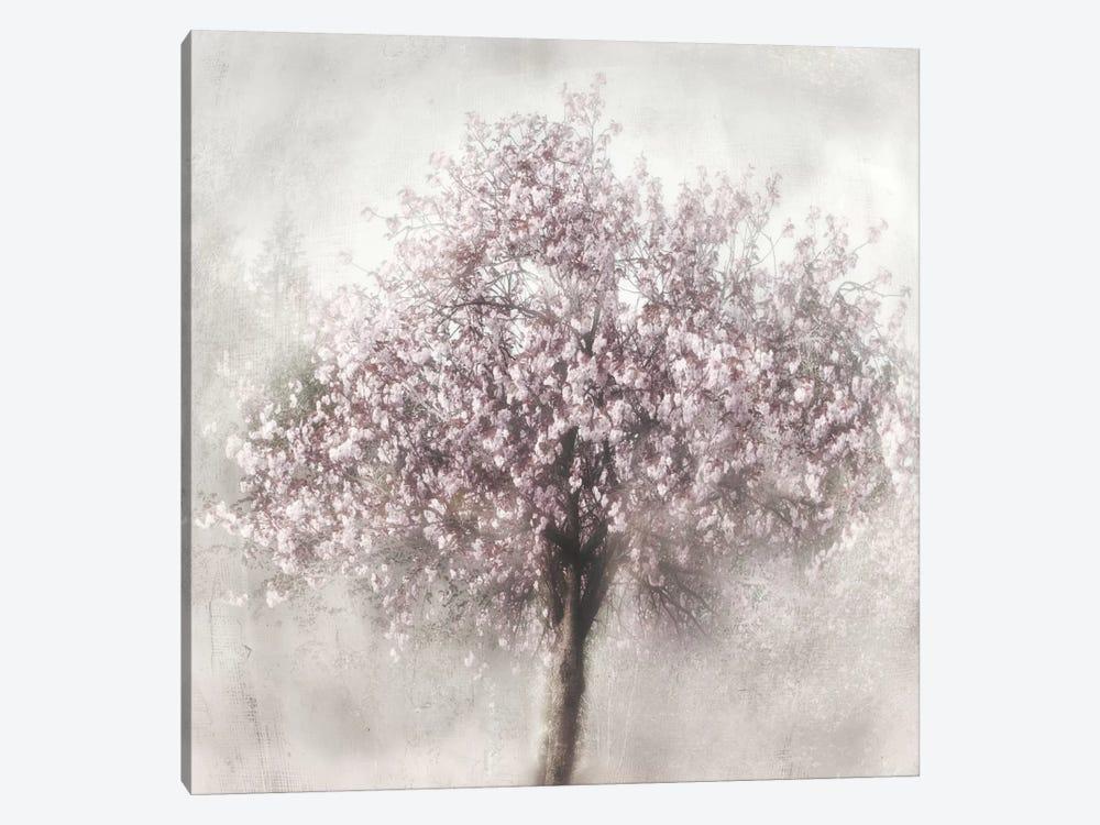 Blossom Of Spring II by Irene Weisz 1-piece Art Print