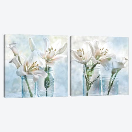 Ball Mason Lily Diptych Canvas Print Set #IWE2HSET002} by Irene Weisz Canvas Wall Art